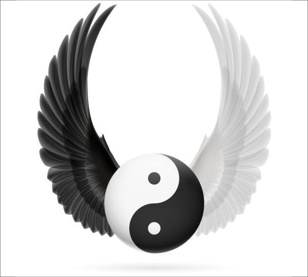 Wings with Yin Yang Ball Vector