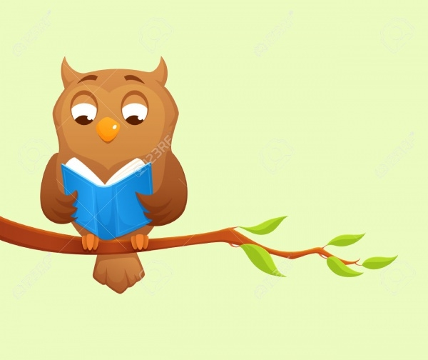 Wise Owl Reading Vector