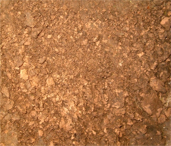 Scratchy Dirt Rough Texture