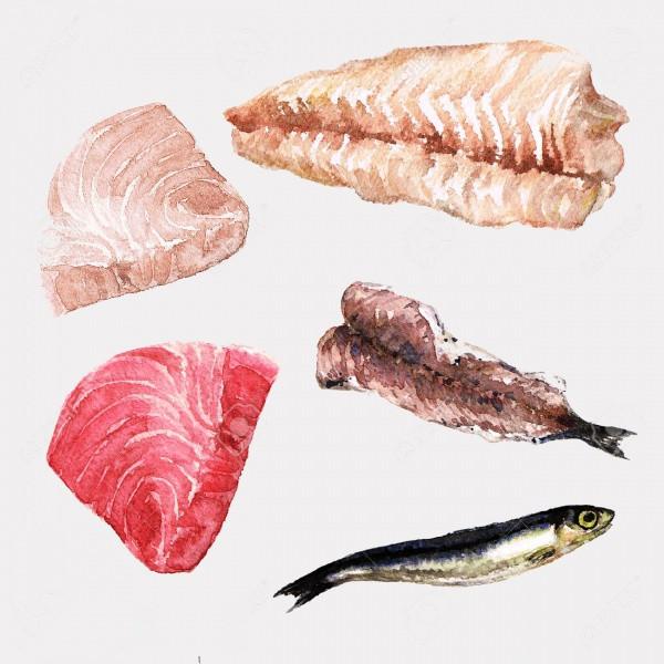 Fish Fillet Food Clip-art