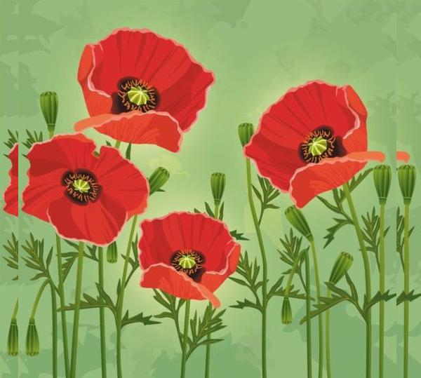 Free Flower Vectors