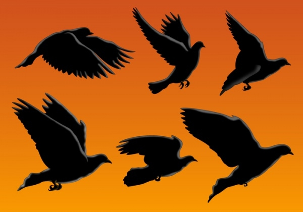 free-flying-bird-silhouettes-design