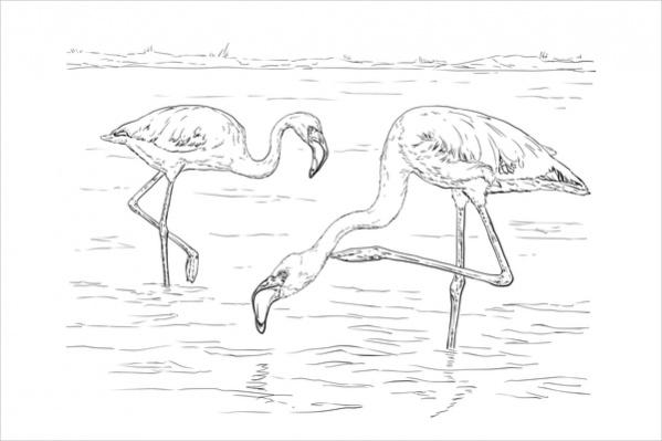 free-printable-bird-coloring-page