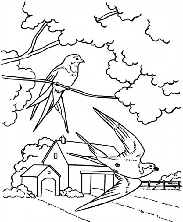 Free Spring Coloring Page for Adults