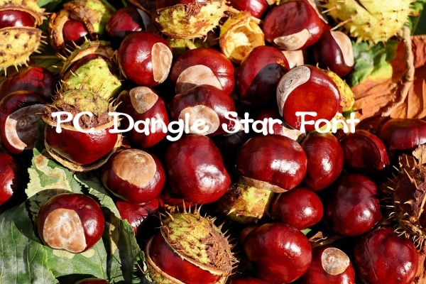 PC Dangle Star Font Design