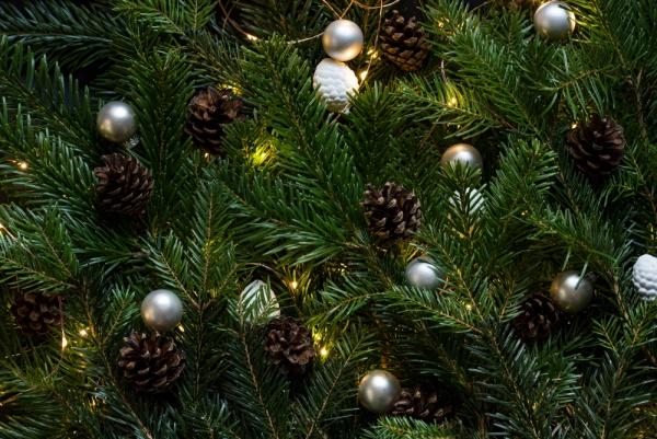 Royalty Free Christmas Image