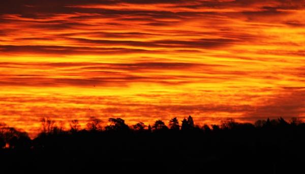 Royalty Free Sunrise Image