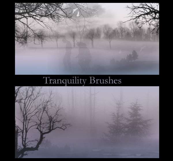 Tranquility Brushes For You