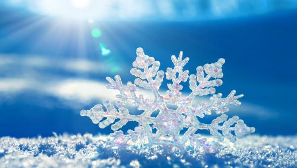 Snowflake elegant. Cliparts jpg ai