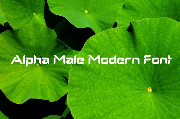 Alpha Male Modern Font