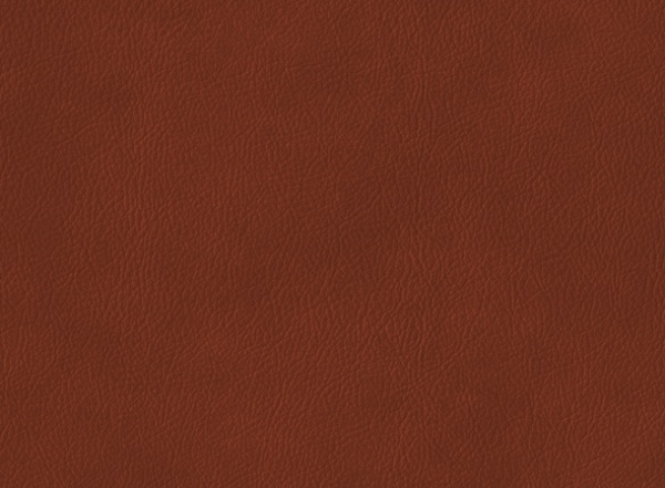 Brown Colored Leather Texture