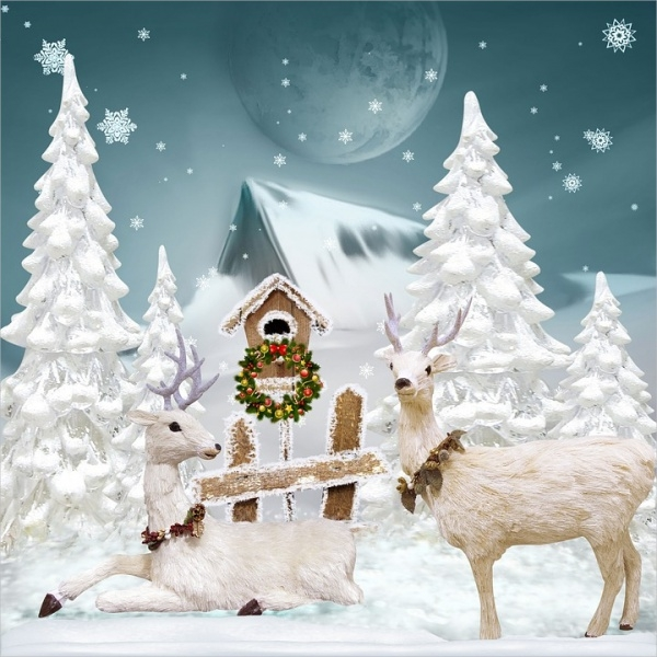 Christmas Winter Greeting Picture Free