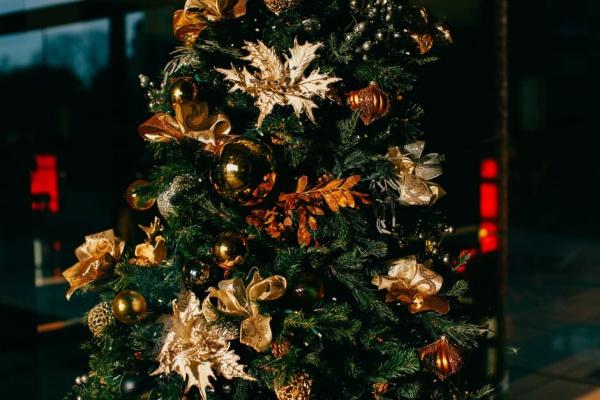 Colorful Christmas Photo
