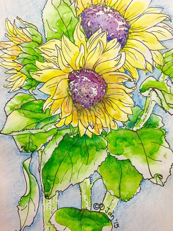 Cute Flower Drawings