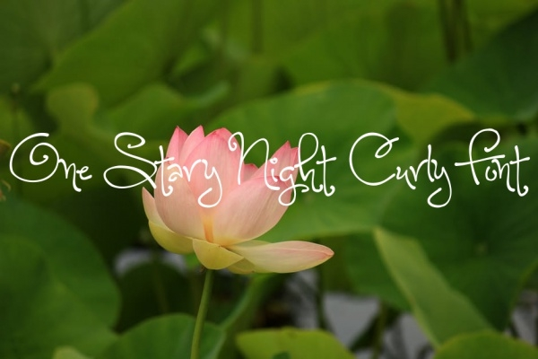 Cute One Stary Night Curly Font