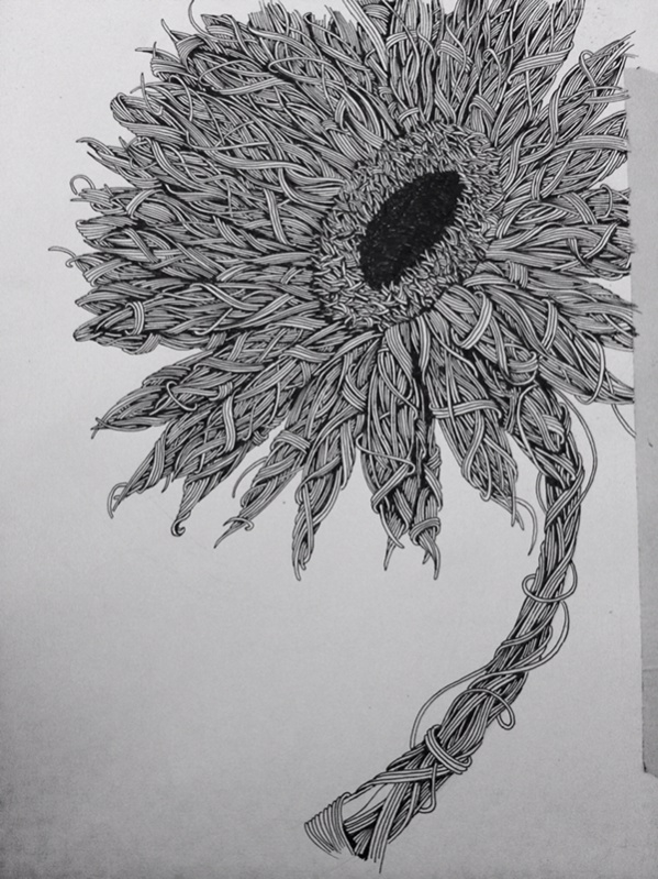 flower pen drawings