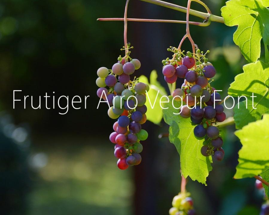 Free Frutiger Arro Vegur Font