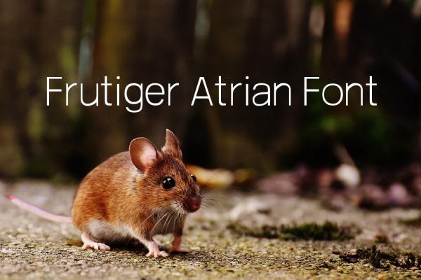 Free Frutiger Atrian Font
