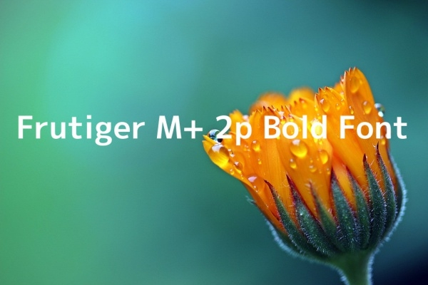 Free Frutiger M+ 2p Bold Font