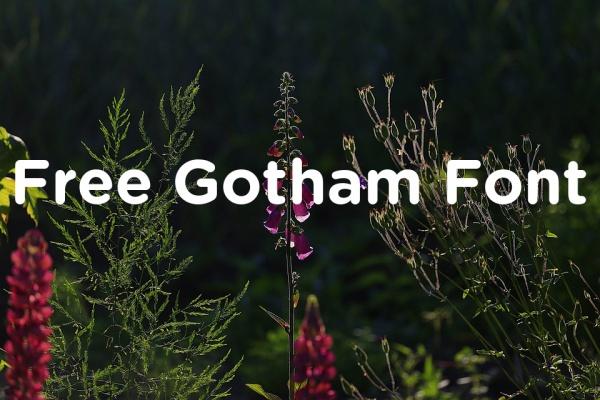 free-gotham-font