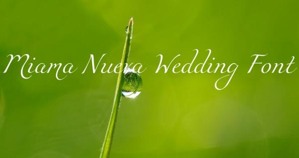 free miama nueva wedding font