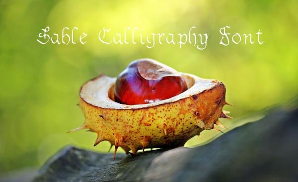 Free Printable Sable Calligraphy Font
