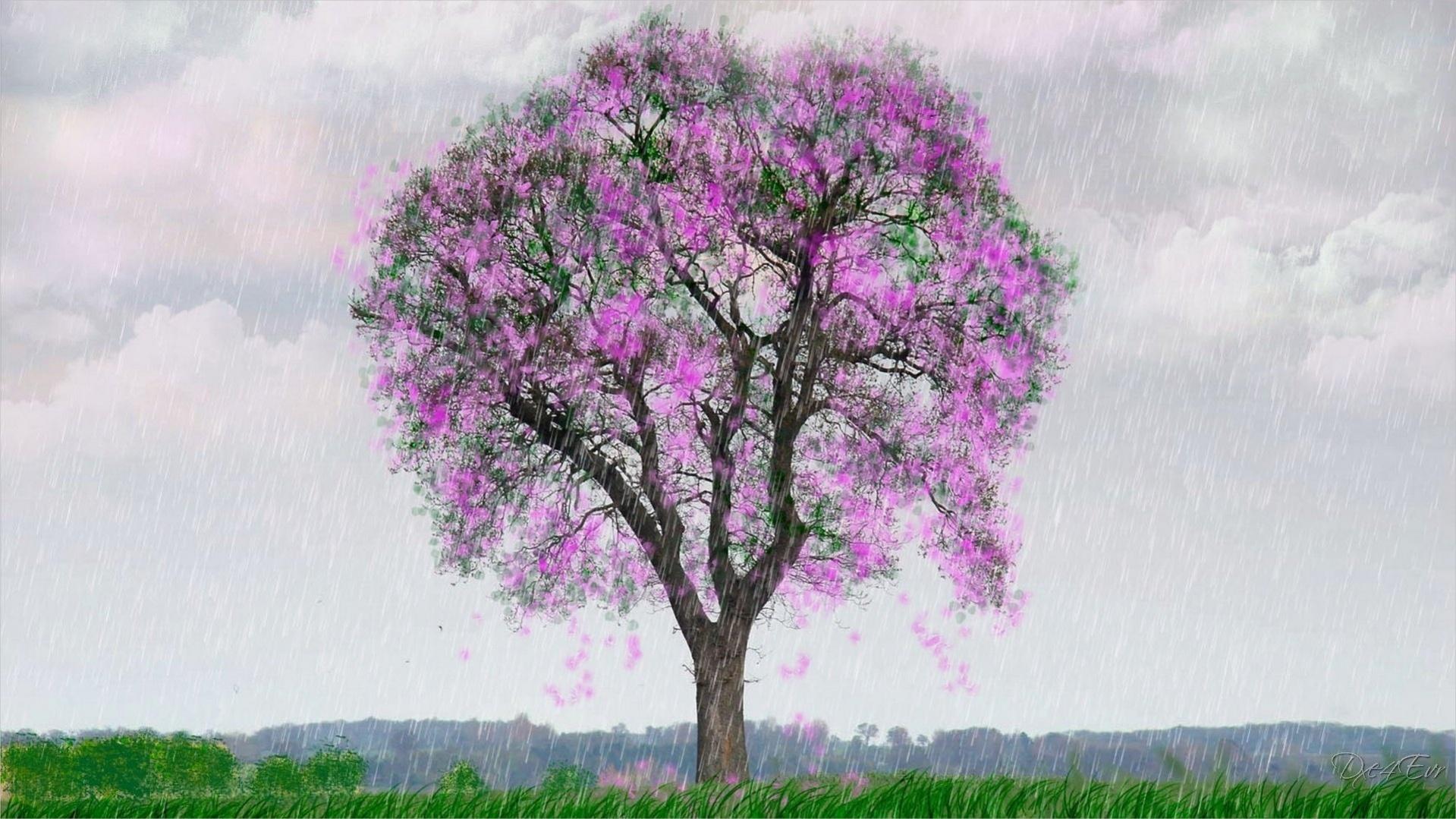 free-spring-rain-wallpaper