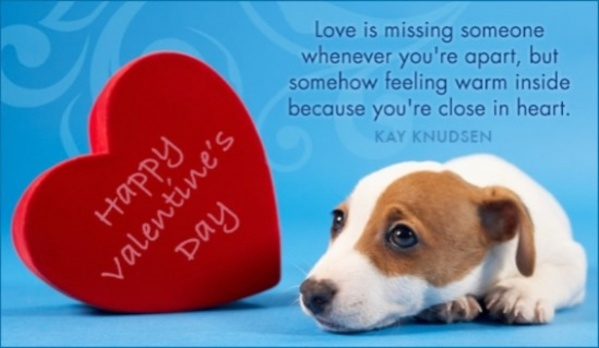 Free Valentine Missing You Ecard