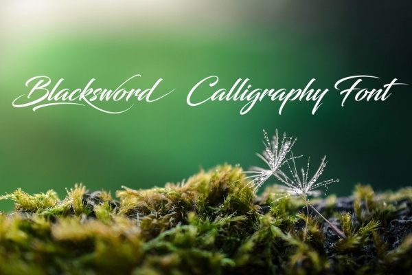 Calligraphy fonts otf ttf download