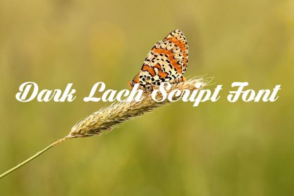 Free Wedding Dark Lach Script Font