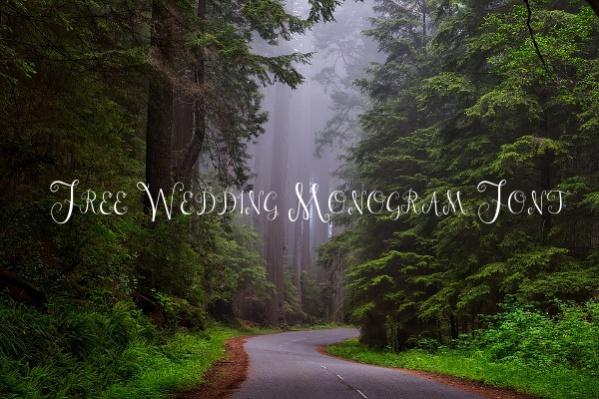 Free Wedding Monogram Font