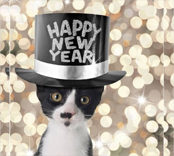 funny-happy-new-year-image