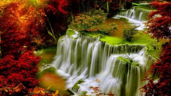 hd autumn wallpaper design