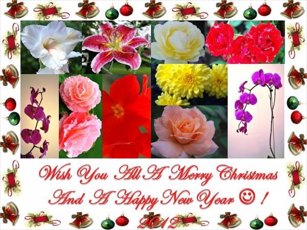Merry Christmas Greeting Image
