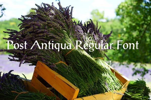 Post Antiqua Regular Font