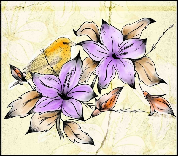 realistic flower drawings