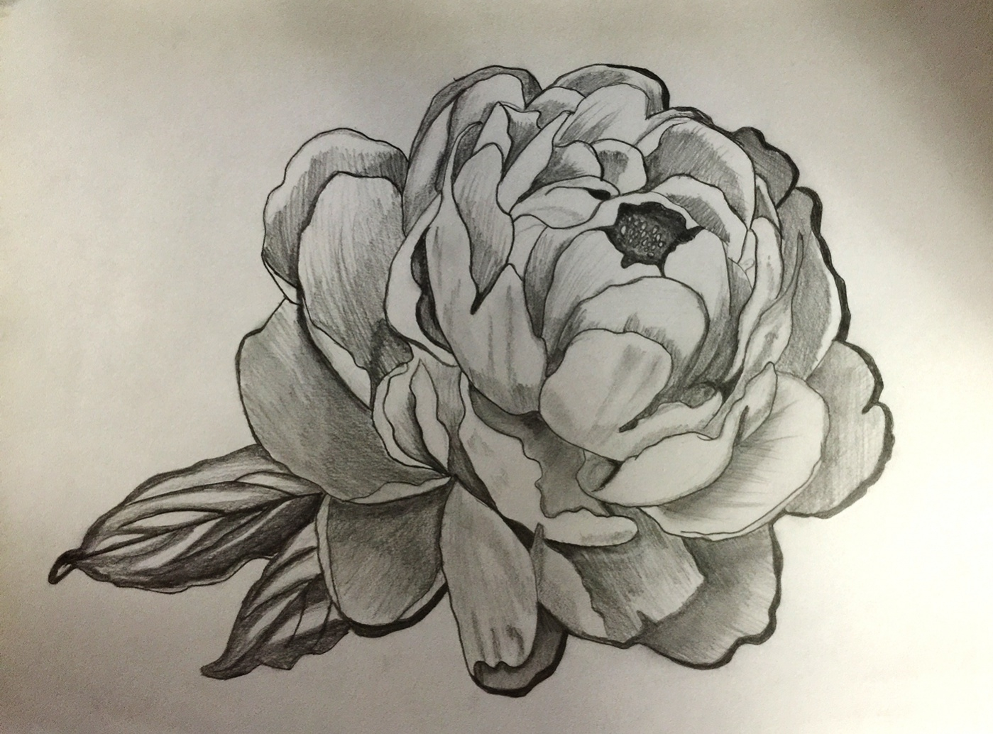 Shaded Flower Drawing