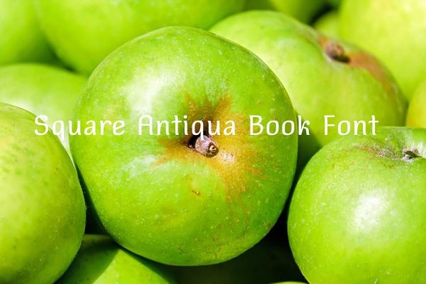 Square Antiqua Book Font