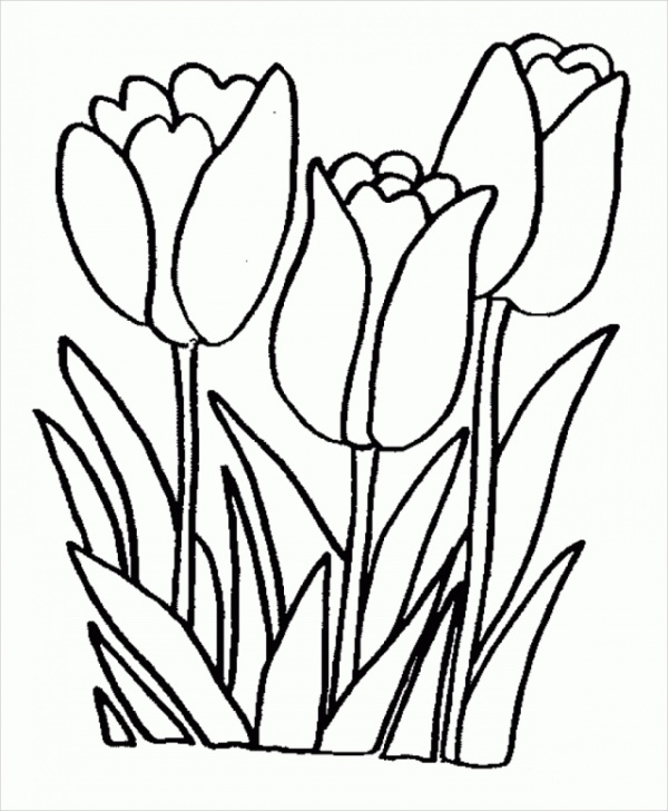 - FREE 19+ Flower Coloring Pages In PDF AI