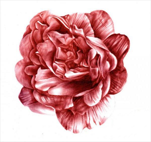 unique flower drawings