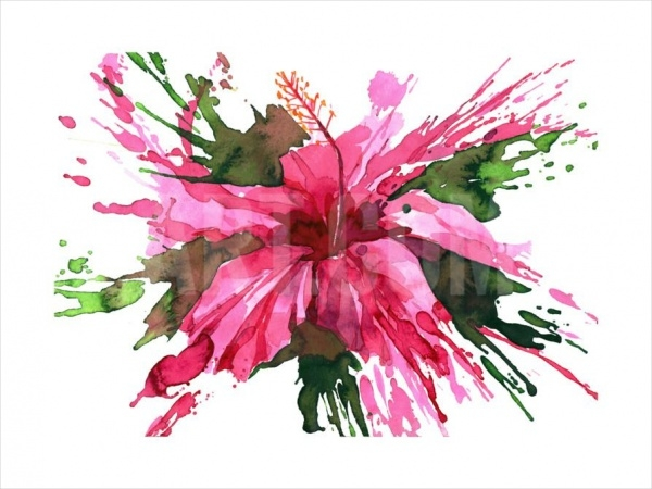 Watercolor Flower Paintings