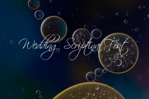 wedding scriptina font