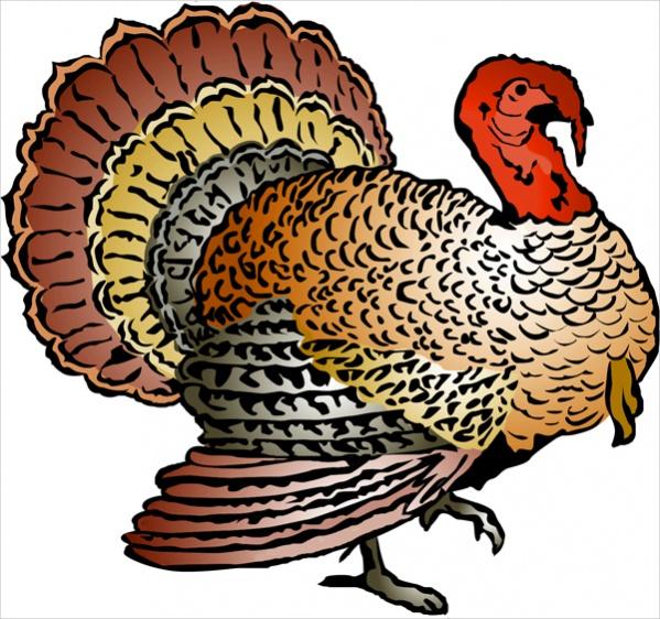 Wild Turkey Clip Art