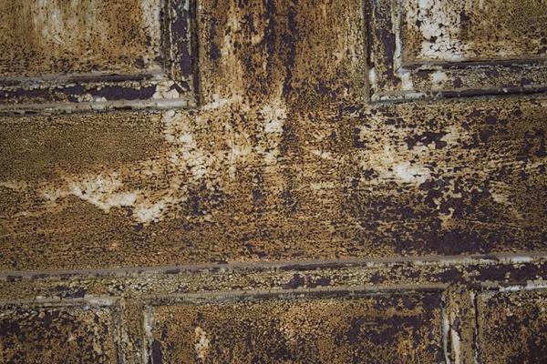 Old Door Metal texture