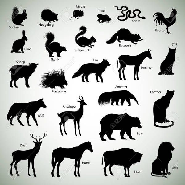 Animal silhouettes on Abstract background