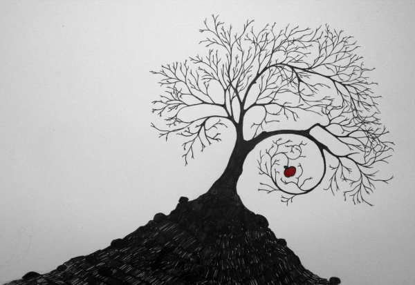 Apple Tree Drawing With Roots