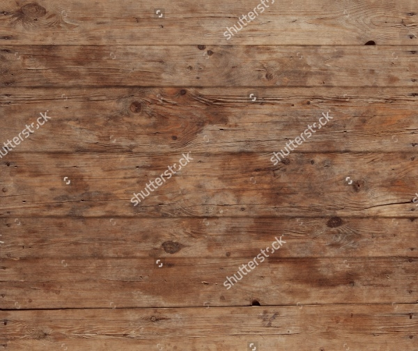 Bark Wood Pattern
