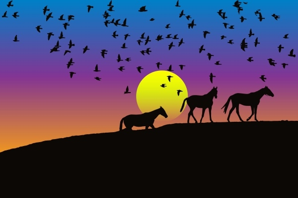 Birds And Horses Silhouette