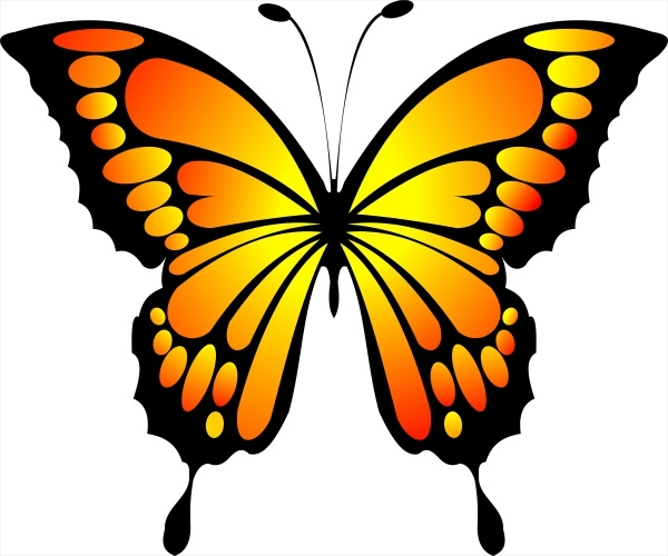 Colorful Butterfly Clipart