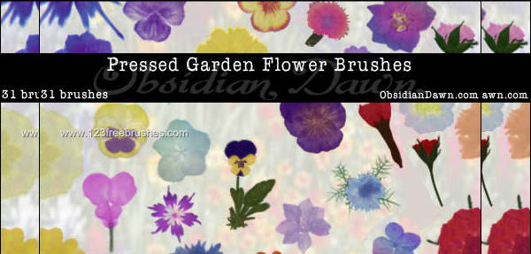 Colorful Flower Brushes